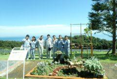 高校生花とみどりのガーデンを作成しました